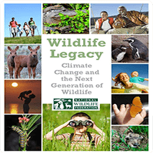 WildlifeLegacy_CoverImage_219x219