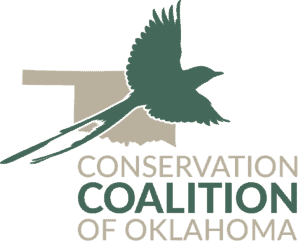 CCO_Logo_2016_V